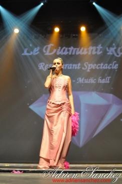 Election Miss Prestige Aquitaine 2013 à Saint Loubès avec Geneviève de Fontenay . Photographe Adrien SANCHEZ INFANTE (288)