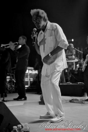 Vibrations Urbaines #16 Max Romeo Phases Cachees Volodia D'Clik Cheeko Keurspi Joey LarséTairo Mungo's Hifi Solo Baton Reggae Pessac Bellegrave 18 octobre 2013 Photographe vidéo Adrien SANCHEZ INF (34)
