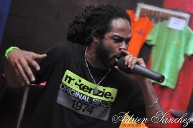 Soirée Reggae Humanity Sound UAK Prod Adrien SANCHEZ INFANTE New Destiny Orphanage Kris Daddy Yslovah Zenobia Awakx Sound (11)