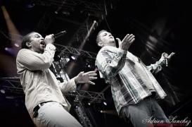 Free Music Festival 2014 photographe Adrien Sanchez Infante Dub Inc (23)