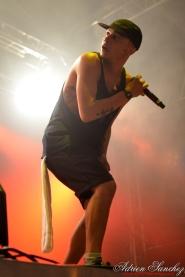 Free Music Festival 2014 photographe Adrien Sanchez Infante Set & Match (3)