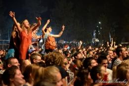 Free Music Festival 2014 photographe Adrien Sanchez Infante Skip The Use (24)