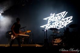 Free Music Festival 2014 photographe Adrien Sanchez Infante The Bloody Beetroots (1)