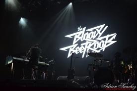 Free Music Festival 2014 photographe Adrien Sanchez Infante The Bloody Beetroots (10)