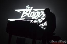 Free Music Festival 2014 photographe Adrien Sanchez Infante The Bloody Beetroots (12)