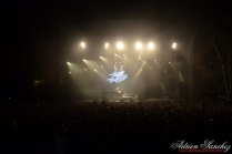 Free Music Festival 2014 photographe Adrien Sanchez Infante The Bloody Beetroots (17)