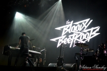 Free Music Festival 2014 photographe Adrien Sanchez Infante The Bloody Beetroots (8)