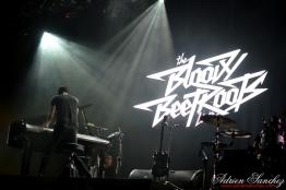 Free Music Festival 2014 photographe Adrien Sanchez Infante The Bloody Beetroots (8)