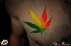 Photo Reggae Sun Ska 17 bordeaux 2014 photographe adrien sanchez infante (11)