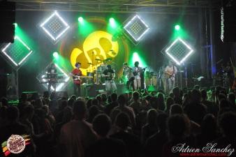 Photo Reggae Sun Ska 17 bordeaux 2014 photographe adrien sanchez infante Jr Yellam Green & Fresh (3)