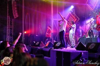 Photo Reggae Sun Ska 17 bordeaux 2014 photographe adrien sanchez infante Jr Yellam Green & Fresh (6)