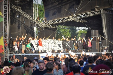 Best 2014 Reggae Sun SKa (299)