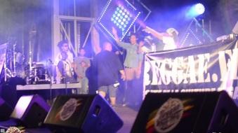 Best 2014 Reggae Sun SKa (366)