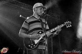 Best 2014 Reggae Sun SKa (439)