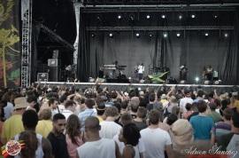 Best 2014 Reggae Sun SKa (654)