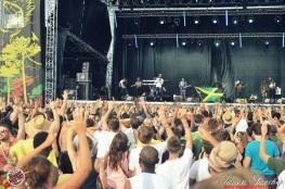 Best 2014 Reggae Sun SKa (655)