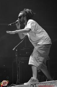 Best 2014 Reggae Sun SKa (710)