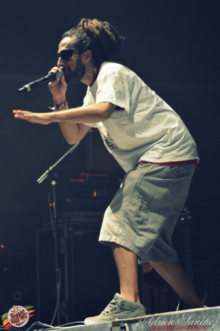 Best 2014 Reggae Sun SKa (711)