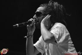 Best 2014 Reggae Sun SKa (712)