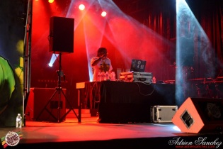 Best 2014 Reggae Sun SKa (821)