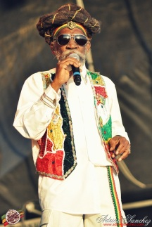Photo 2014 Reggae Sun Ska RSS Bordeaux Bunny Wailer Photographe Adrien SANCHEZ INFANTE (11)