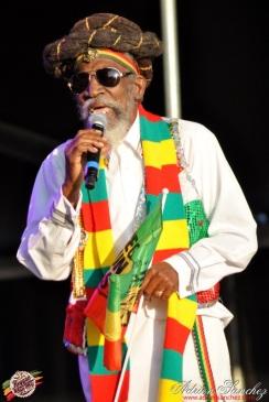 Photo 2014 Reggae Sun Ska RSS Bordeaux Bunny Wailer Photographe Adrien SANCHEZ INFANTE (3)