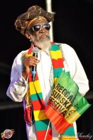 Photo 2014 Reggae Sun Ska RSS Bordeaux Bunny Wailer Photographe Adrien SANCHEZ INFANTE (4)