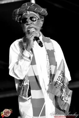 Photo 2014 Reggae Sun Ska RSS Bordeaux Bunny Wailer Photographe Adrien SANCHEZ INFANTE (5)