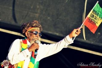 Photo 2014 Reggae Sun Ska RSS Bordeaux Bunny Wailer Photographe Adrien SANCHEZ INFANTE (6)