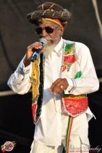 Photo 2014 Reggae Sun Ska RSS Bordeaux Bunny Wailer Photographe Adrien SANCHEZ INFANTE (8)