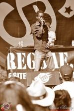 Photo 2014 Reggae Sun Ska RSS Bordeaux Carte Blanche Génération H Mr Lezard Pepet J LMK Leah Rosier Kateb Mardjenal Sir Jean Patko Tchong Libo Karma Scars Papa Style Photographe Adrien SANCHEZ INFANTE (9)
