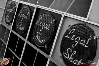 Photo 2014 Reggae Sun Ska RSS Bordeaux Legal Shot Ghostriders Peter Youthman Photographe Adrien SANCHEZ INFANTE (8)