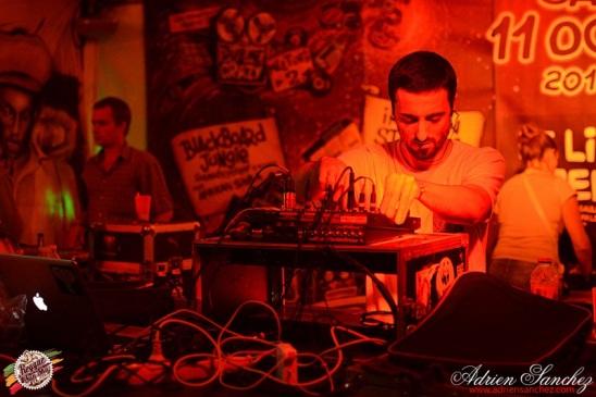 Photo 2014 Reggae Sun Ska RSS Bordeaux Panda Dub Photographe Adrien SANCHEZ INFANTE (6)