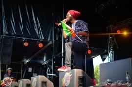 Photo 2014 Reggae Sun Ska RSS Bordeaux Randy Valentine Photographe Adrien SANCHEZ INFANTE (12)