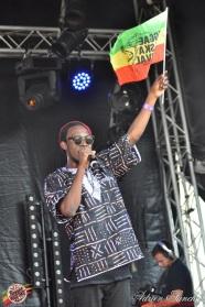 Photo 2014 Reggae Sun Ska RSS Bordeaux Randy Valentine Photographe Adrien SANCHEZ INFANTE (4)