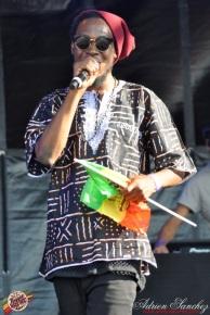 Photo 2014 Reggae Sun Ska RSS Bordeaux Randy Valentine Photographe Adrien SANCHEZ INFANTE (6)