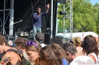 Photo 2014 Reggae Sun Ska RSS Bordeaux Randy Valentine Photographe Adrien SANCHEZ INFANTE (7)
