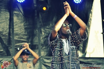 Photo 2014 Reggae Sun Ska RSS Bordeaux Randy Valentine Photographe Adrien SANCHEZ INFANTE (8)