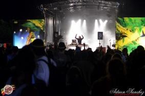 Photo 2014 Reggae Sun Ska RSS Bordeaux Stone Love Photographe Adrien SANCHEZ INFANTE (5)