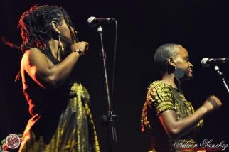 Photo 2014 Reggae Sun Ska RSS Bordeaux Winston Jarrett Natty will fly again Photographe Adrien SANCHEZ INFANTE (2)