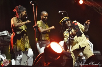 Photo 2014 Reggae Sun Ska RSS Bordeaux Winston Jarrett Natty will fly again Photographe Adrien SANCHEZ INFANTE (3)