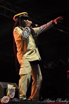 Photo 2014 Reggae Sun Ska RSS Bordeaux Winston Jarrett Natty will fly again Photographe Adrien SANCHEZ INFANTE (5)