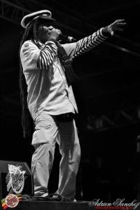 Photo 2014 Reggae Sun Ska RSS Bordeaux Winston Jarrett Natty will fly again Photographe Adrien SANCHEZ INFANTE (6)