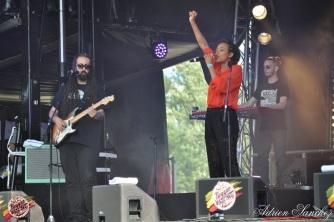 Photo Reggae Sun SKA 2014 Bordeaux RSS17 photographe adrien sanchez infante (1)
