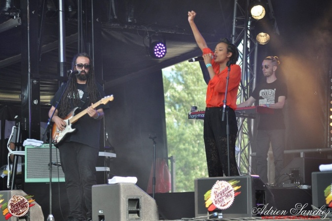 Photo Reggae Sun SKA 2014 Bordeaux RSS17 photographe adrien sanchez infante (1)