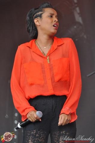 Photo Reggae Sun SKA 2014 Bordeaux RSS17 photographe adrien sanchez infante (2)