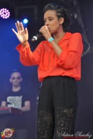 Photo Reggae Sun SKA 2014 Bordeaux RSS17 photographe adrien sanchez infante (5)