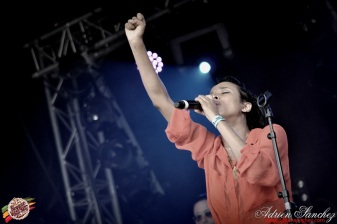 Photo Reggae Sun SKA 2014 Bordeaux RSS17 photographe adrien sanchez infante (6)