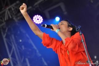 Photo Reggae Sun SKA 2014 Bordeaux RSS17 photographe adrien sanchez infante (7)