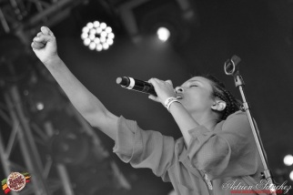 Photo Reggae Sun SKA 2014 Bordeaux RSS17 photographe adrien sanchez infante (8)
